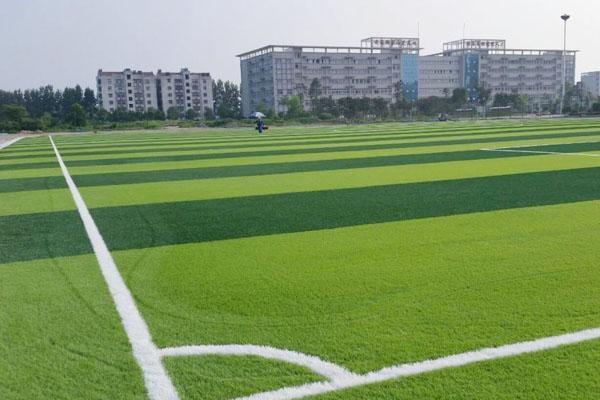 草坪韦德国际足球投注-CP03