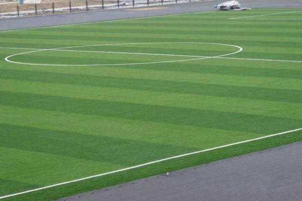 草坪韦德国际足球投注-CP08